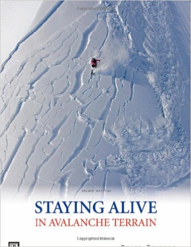 staying-alive-book